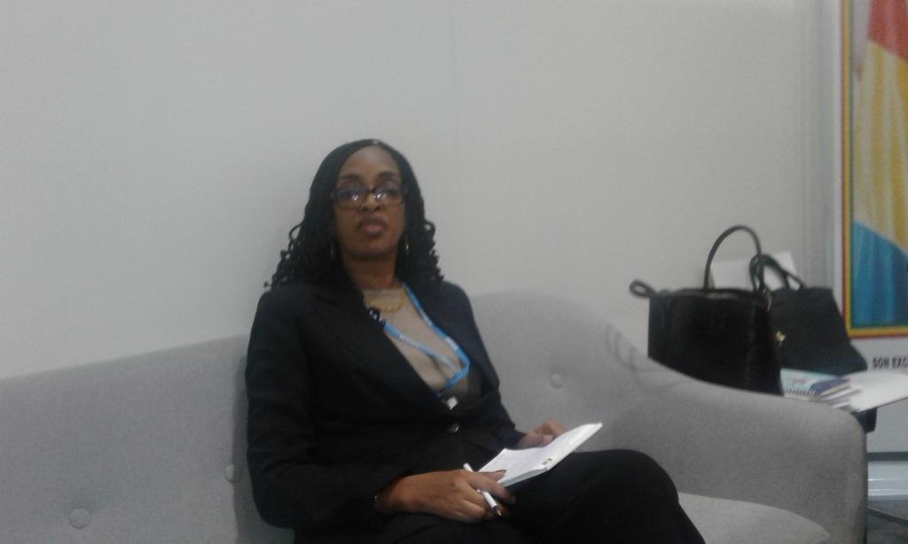 Cop 23: une semaine après le lancement, la Guinée fait le  bilan à mi-parcours