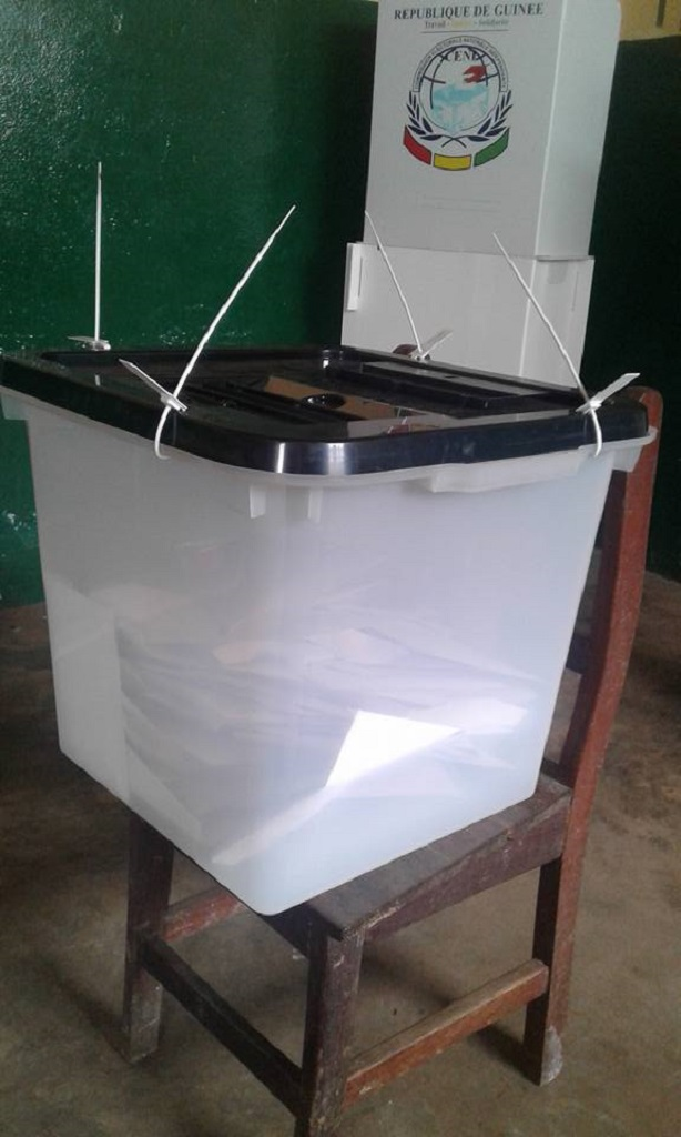Elections communales: les Guinéens ont voté…ce qu'il faut retenir de cette journée…
