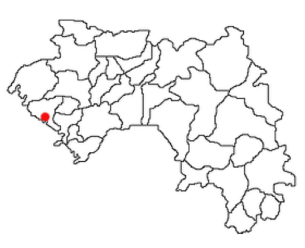 Boffa : une collision entre deux véhicules fait six morts et neuf blessés, dans le secteur Dankharan