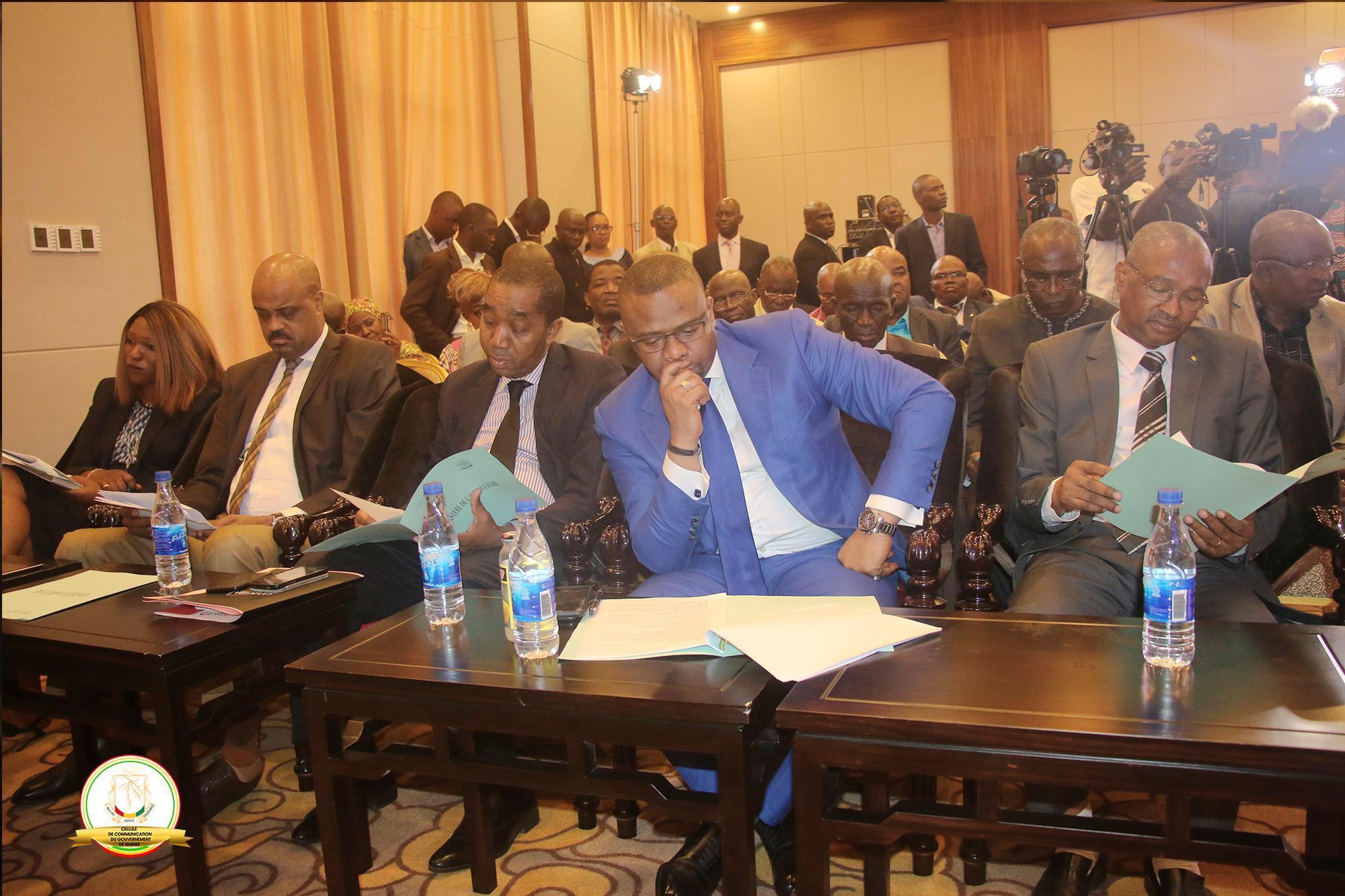 La promotion de l'agriculture pour le développement de la Guinée une priorité du président Alpha Condé