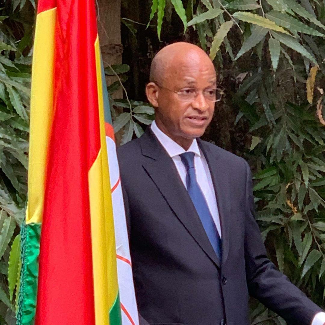 Nouvelle année : les vœux aux guinéens du président de l'UFDG
