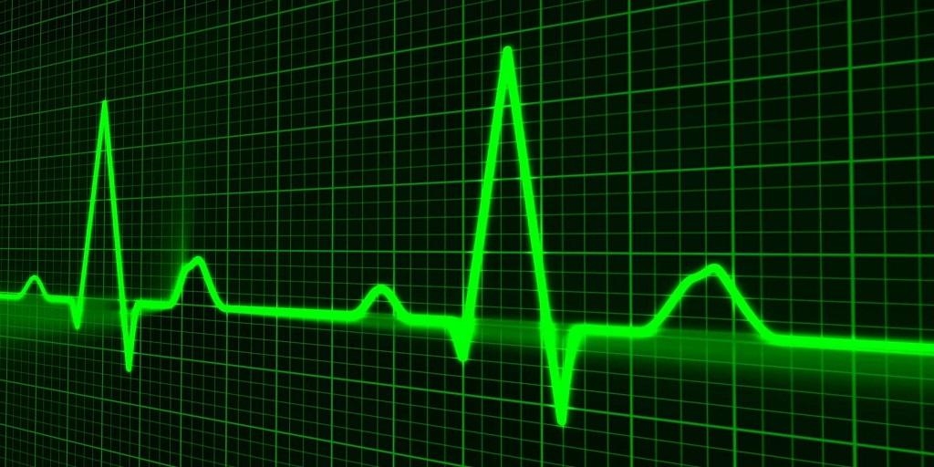SANTÉ Science décalée : de gros testicules seraient liés au risque cardiaque