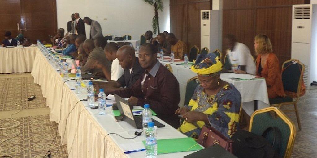 Guinée /MATD : un atelier pour définir le plan d'action pour la mise en œuvre de l'arrêté d'interopérabilité entre la santé et l'état civil.