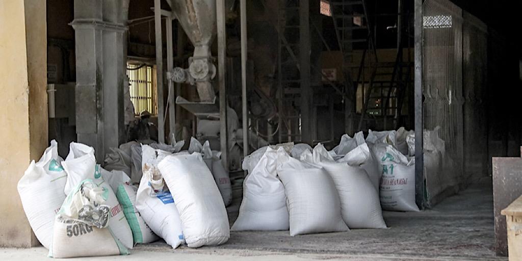 Les investissements privés stimulent la production d'aliments pour poissons au Nigeria