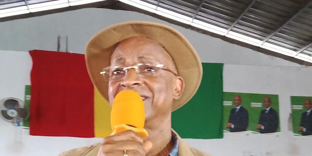Guinée/Politique : Cellou Dalein Diallo, «le chronogramme que Salif vise n'a qu'un seul objectif, c'est de bâcler les élections…»