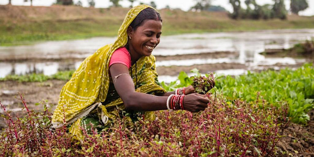Le président de l'organisme des Nations Unies chargé du développement rural en visite en Inde: redoubler d'efforts en vue d'éliminer la pauvreté