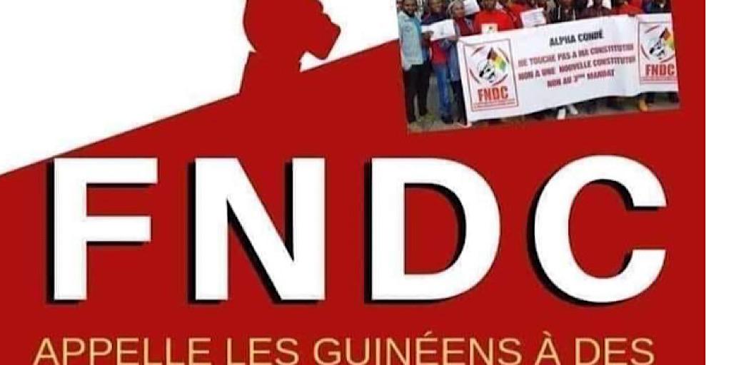 Guinée/Opinion: Cellou Diallo, « Le peuple est fort, ça pique et ça panique, il invoque la constitution qu'ils renient»