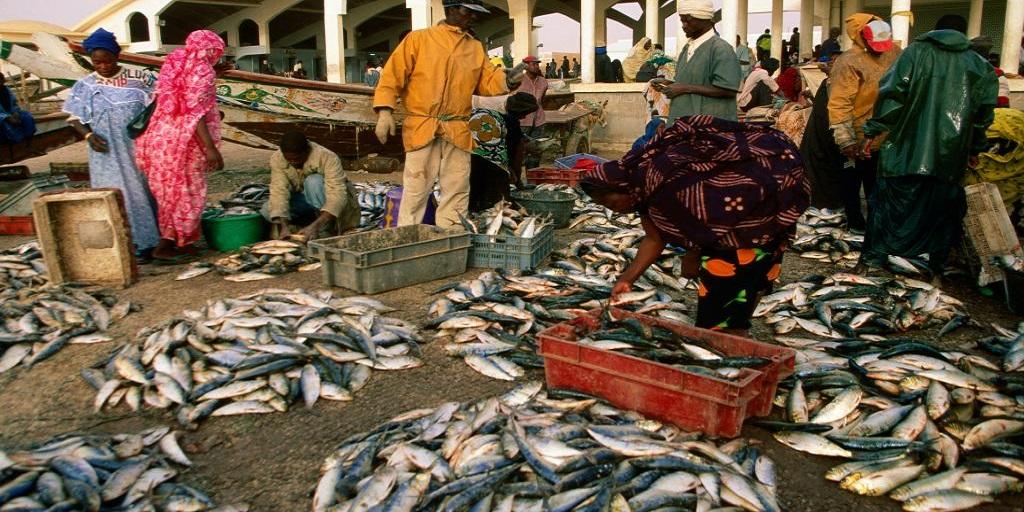 Sénégal – Mauritanie: Prolongement, d'une année, de l'accord de pêche