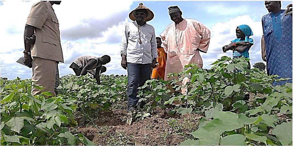 Sénégal – Agriculteurs – Formation: Mieux s'adapter aux changements climatiques